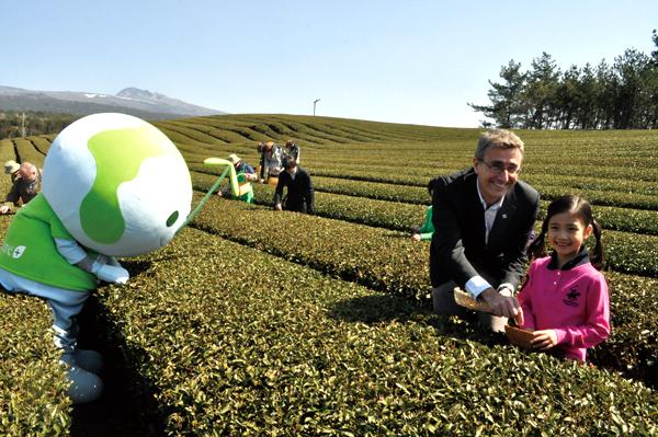 O'sulloc tea garden